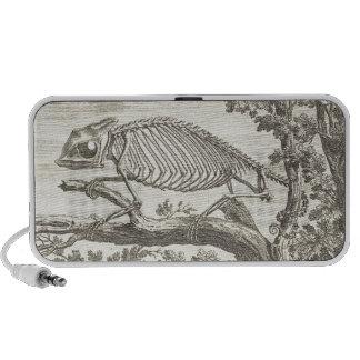 Ejemplo del esqueleto del camaleón iPhone altavoz