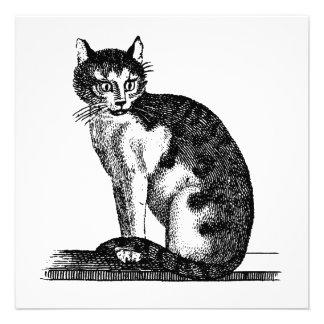 Ejemplo del gato de casa de los 1800s del vintage  invitacion personal