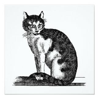 """Ejemplo del gato de casa de los 1800s del vintage invitación 5.25"""" x 5.25"""""""