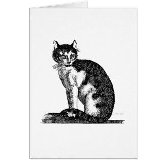 Ejemplo del gato de casa de los 1800s del vintage  felicitacion