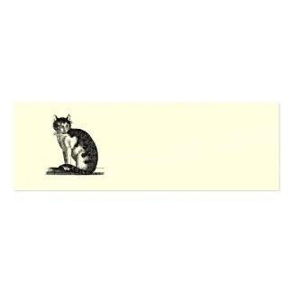 Ejemplo del gato de casa de los 1800s del vintage  tarjetas de visita mini