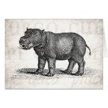 Ejemplo del Hippopotamus de los 1800s del vintage  Tarjeta De Felicitación