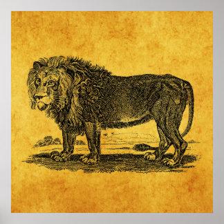 Ejemplo del león del vintage - animal del africano póster