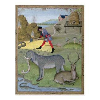 Ejemplo del 'libro de simple postal
