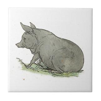 Ejemplo del libro guarro de niños del cerdo gris azulejo cuadrado pequeño