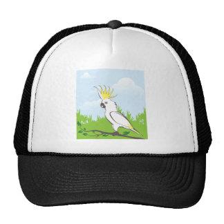 Ejemplo del loro gorra