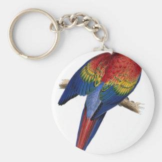 Ejemplo del Macaw del escarlata Llavero Personalizado
