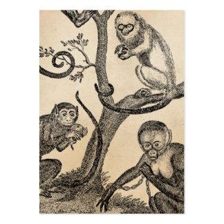 Ejemplo del mono del vintage - monos 1800's tarjetas personales