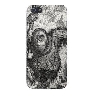 Ejemplo del orangután del vintage - mono 1800's iPhone 5 cobertura