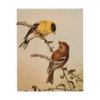Ejemplo del pájaro de Goldfinchs del americano Cuadros De Madera