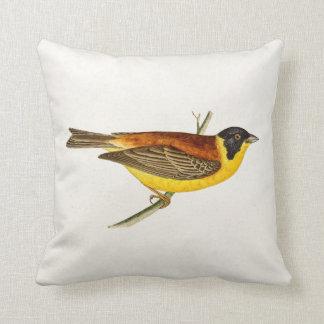 Ejemplo del pájaro de la canción del vintage - cojin
