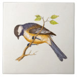 Ejemplo del pájaro de la canción del vintage - páj azulejo