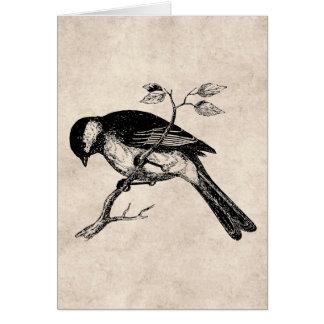 Ejemplo del pájaro de la canción del vintage - páj tarjetón