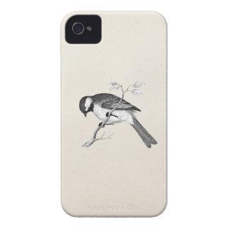 Ejemplo del pájaro de la canción del vintage - páj Case-Mate iPhone 4 protectores