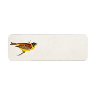 Ejemplo del pájaro de la canción del vintage - páj etiqueta de remite