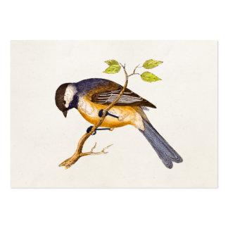 Ejemplo del pájaro de la canción del vintage - páj tarjetas de visita grandes