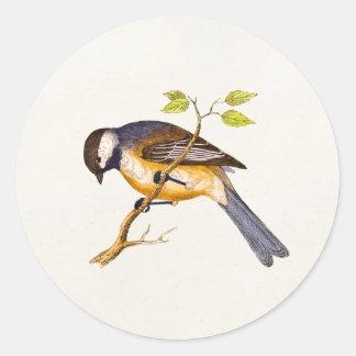Ejemplo del pájaro de la canción del vintage - pegatina redonda