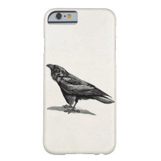 Ejemplo del pájaro del mirlo de cuervo del cuervo funda para iPhone 6 barely there
