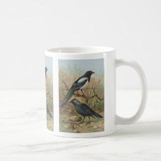 Ejemplo del pájaro del vintage de la urraca y del  taza de café