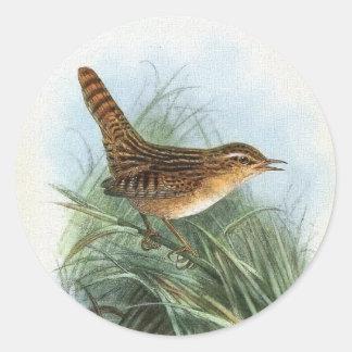 Ejemplo del pájaro del vintage del Wren de juncia Pegatinas Redondas