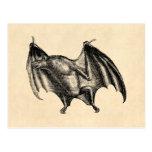 Ejemplo del palo de vampiro de los 1800s del vinta tarjeta postal