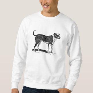 Ejemplo del perro del dogo de los 1800s del suéter