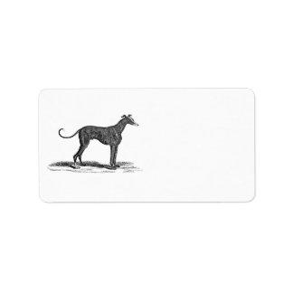 Ejemplo del perro del galgo de los 1800s del etiquetas de dirección