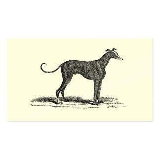 Ejemplo del perro del galgo de los 1800s del vinta plantillas de tarjetas de visita