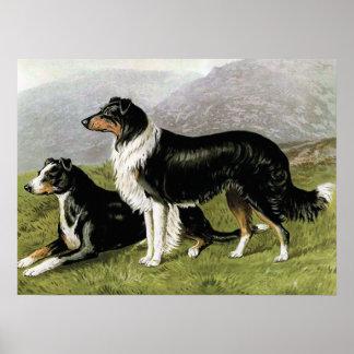"""Ejemplo del perro del vintage de los """"perros pasto póster"""