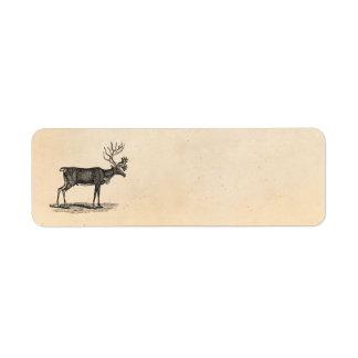 Ejemplo del reno del vintage - navidad 1800's etiqueta de remitente