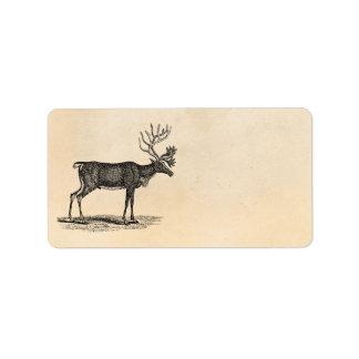 Ejemplo del reno del vintage - navidad 1800's etiquetas de dirección