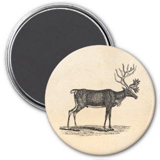 Ejemplo del reno del vintage - navidad 1800's imán redondo 7 cm