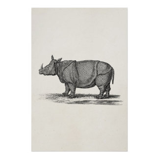Ejemplo del rinoceronte de los 1800s del vintage - póster