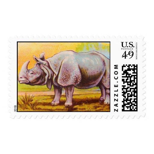 Ejemplo del rinoceronte del vintage sello