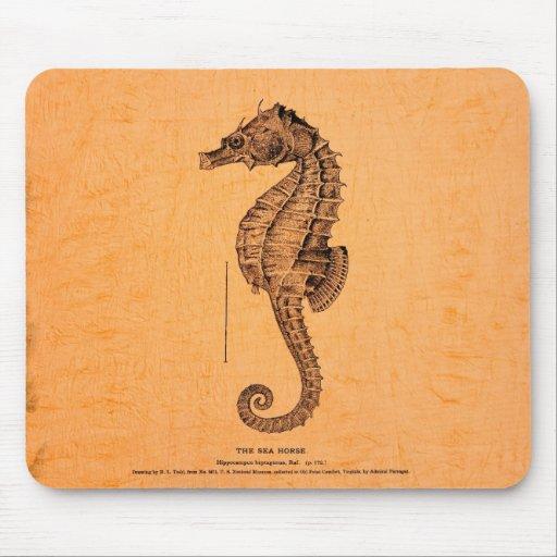 Ejemplo del Seahorse del vintage Alfombrilla De Raton