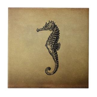 Ejemplo del Seahorse del vintage Azulejo Ceramica