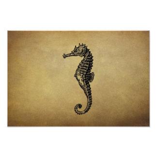 Ejemplo del Seahorse del vintage Cojinete