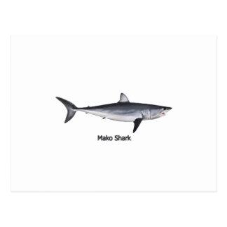Ejemplo del tiburón de Mako de Shortfin Postales