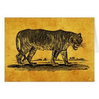 Ejemplo del tigre del vintage - tigres 1800 s afri tarjeton