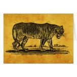 Ejemplo del tigre del vintage - tigres 1800's afri tarjeton