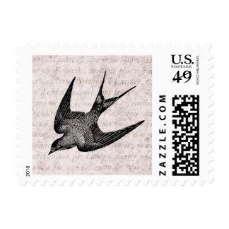 Ejemplo del trago del vintage - pájaro antiguo 180