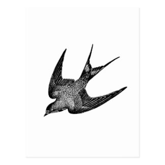 Ejemplo del trago del vintage - pájaro antiguo postal