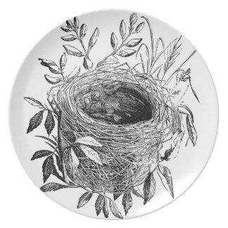 ejemplo del vintage de la jerarquía del pájaro plato