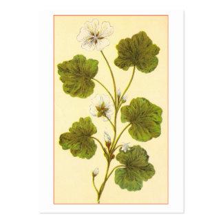 Ejemplo del vintage de la malva con hojas redonda tarjeta personal