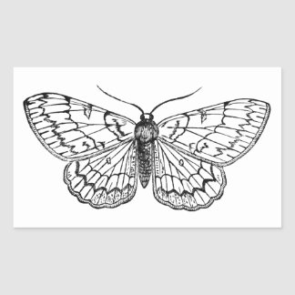 ejemplo del vintage de la mariposa pegatina rectangular