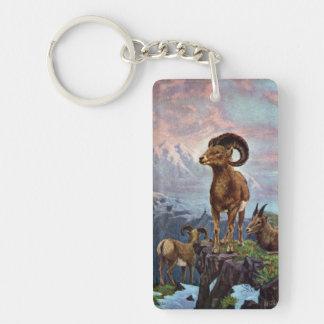 Ejemplo del vintage de las ovejas de Bighorn Llavero Rectangular Acrílico A Una Cara