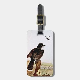 Ejemplo del vintage de los Kingbirds Etiqueta De Equipaje