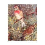 Ejemplo del vintage de los pájaros de Linnent Impresión En Lienzo Estirada