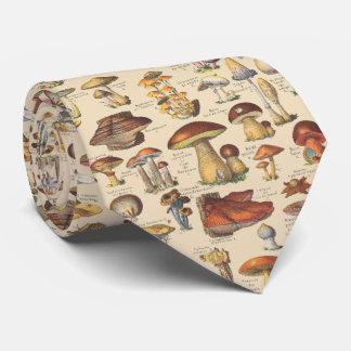 Ejemplo del vintage de setas corbatas