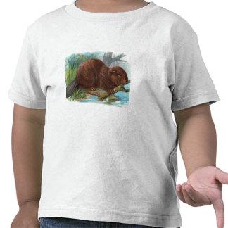 """Ejemplo del vintage """"del castor"""" camiseta"""